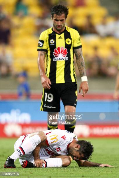 Nikola Mileusnic of Adelaide United holds his ankle after being tackled by Tom Doyle of the Phoenix during the round 18 ALeague match between the...