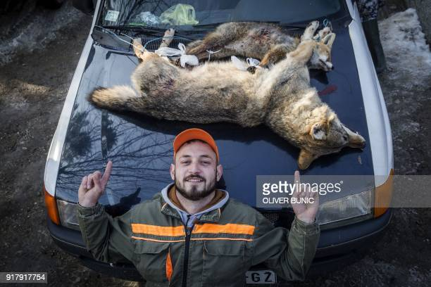 NIkola Milincic poses with his trophies a dead female wolf and male fox after a wolf hunt in the town of Blace southern Serbia on January 27 2018...