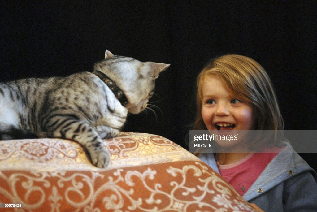 Nile, also known as Midnight in the movie 'Catwoman' poses for a photo with Caroline Czarnecki, age 3 1/2, at the 10th Annual Pet Night on Capitol Hill. Caroline was at the recption with her mother Karen, the Deputy Assistant Secretary of Labor for Inter Governmental Affairs.