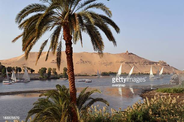 nile at aswan - aswan stock pictures, royalty-free photos & images