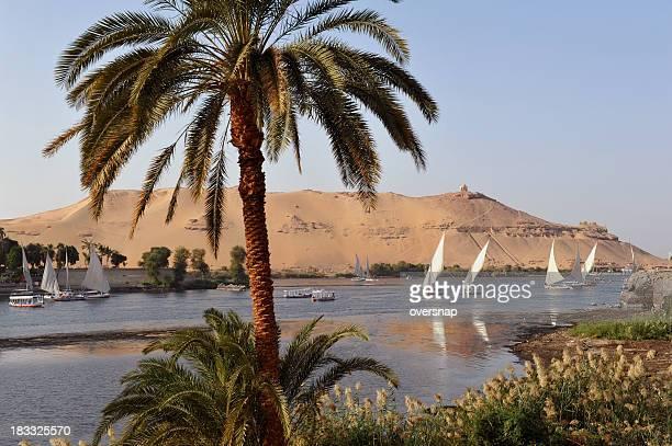 Nile at Aswan