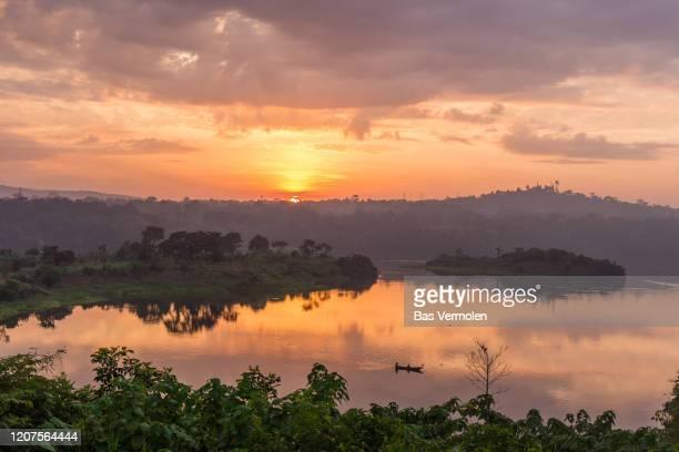 nile river at jinja, uganda - uganda stock pictures, royalty-free photos & images