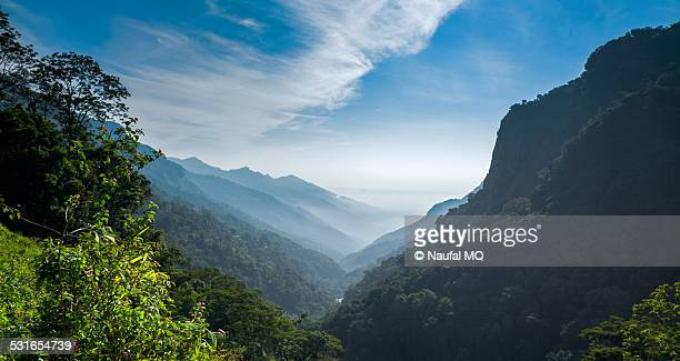 Nilgiris mountain range
