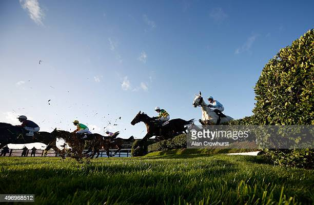 Nina Carberry riding Josies Orders on their way to winning The Glenfarclas Cross Country Steeple Chase at Cheltenham racecourse on November 13 2015...