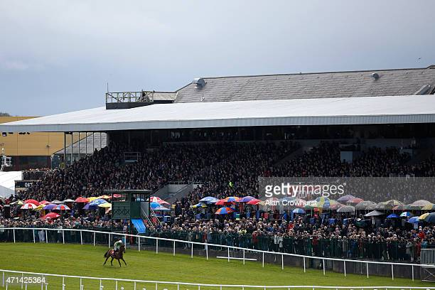 Nina Carberry riding Wish Ye Didnt The Kildare Hunt Club Fr Breen Memorial Steeple Chase at Punchestown racecourse on April 28 2015 in Naas Ireland