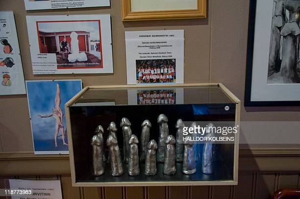 Nina LARSON Penis statuettes stand erect in a display case in Iceland's Phallological Museum on June 28 2011 in Husavik From gigantic whale penises...