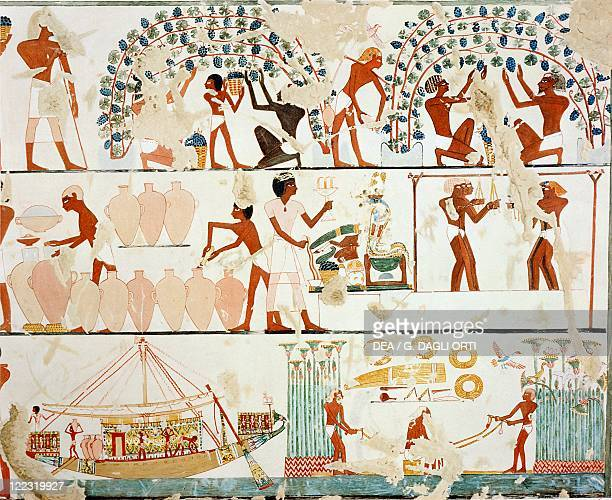 Nina M Davies 'Ancient Egyptian Painting' Chicago1936 Plate work in the vineyard grape harvest winepressing and transport Replica of fresco from...