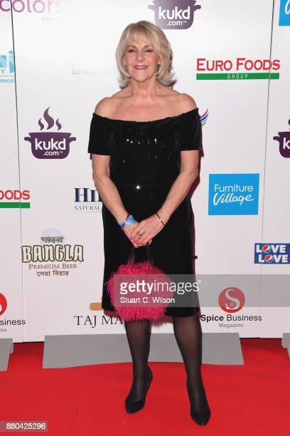 Nina Myskow attends The British Curry Awards at Battersea Evolution on November 27 2017 in London England
