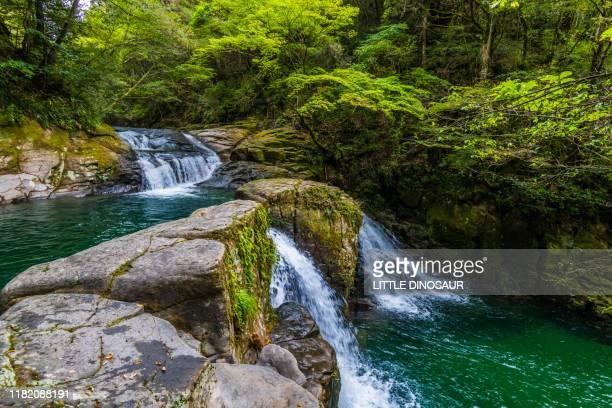 ninai-daki, akame 48 waterfalls - 三重県 ストックフォトと画像