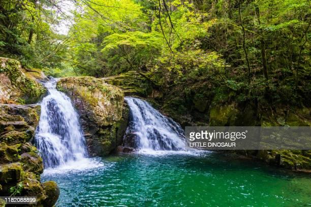 ninai-daki, akame 48 waterfalls - mie prefecture stock pictures, royalty-free photos & images