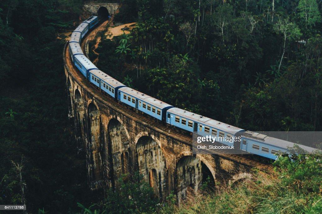 Nine Arch Bridge in Sri Lanka : Stock Photo