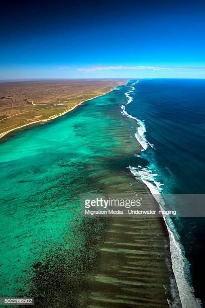 Ningaloo Reef 3