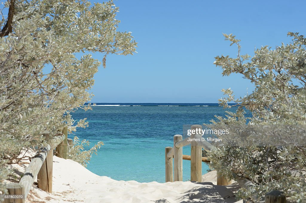 Ningaloo Reef, Western Australia : News Photo