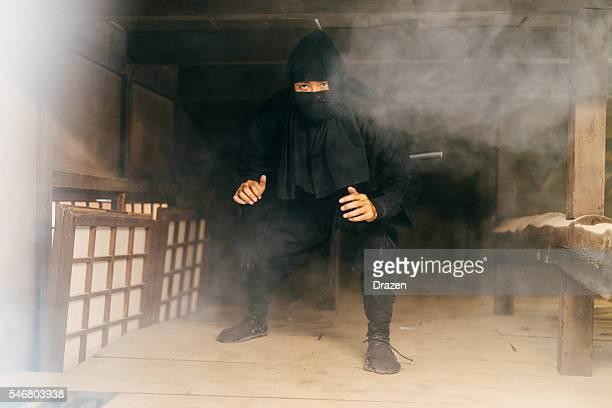 Ninja preparing revenge for Emperor's army