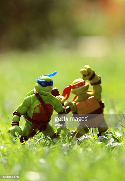 tortugas ninja - ninja fotografías e imágenes de stock