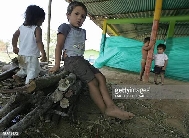 Ninos desplazados descansan sobre un haz de lena el 14 de febrero de 2006 en el municipio de Vistahermosa, departamento del Meta, Colombia. 45...