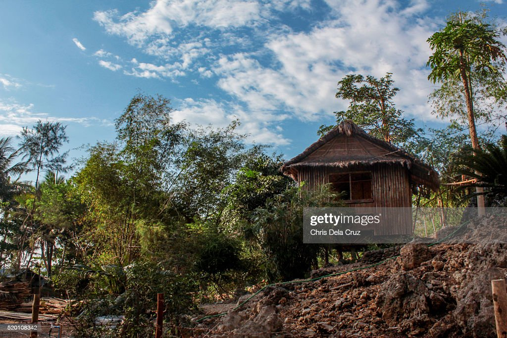 Nipa hut house with trees : Stock Photo