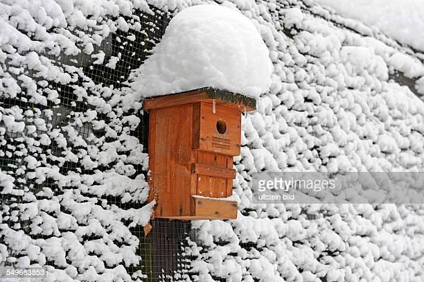 Nistkasten an verschneiter Wand im Garten bietet Singvögeln im Winter Unterschlupf