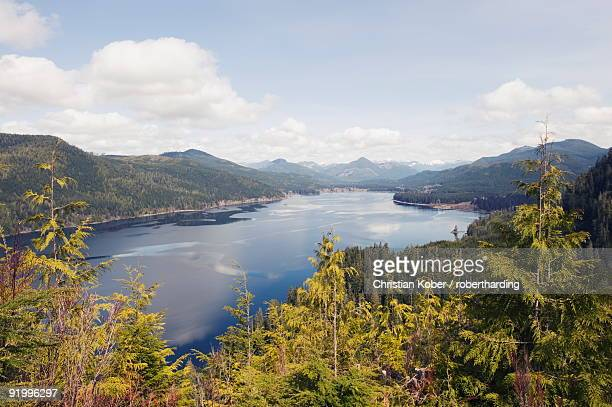 nitinat lake, carmanah walbran provincial park, vancouver island, british columbia, canada, north america - carmanah walbran provincial park stock pictures, royalty-free photos & images