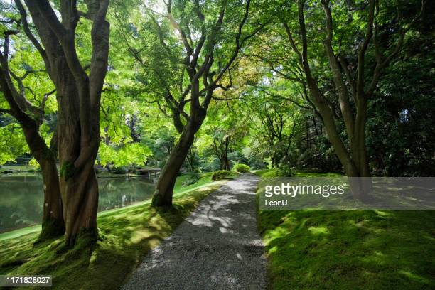nitobe memorial garden, vancouver, canada - ubc stock pictures, royalty-free photos & images