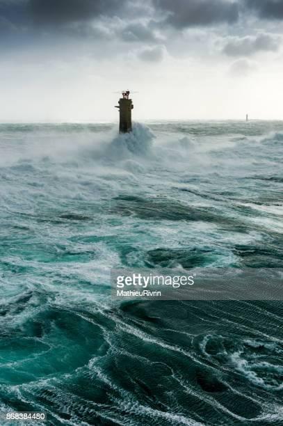 Nividic in the Storm