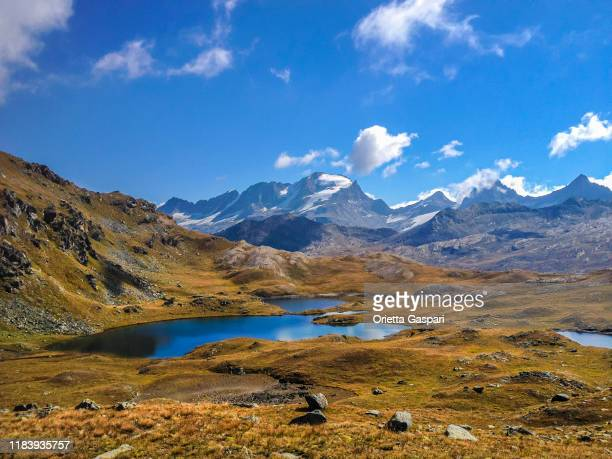 nivolet pass, parco nazionale del gran paradiso - italia - parco nazionale del gran paradiso foto e immagini stock