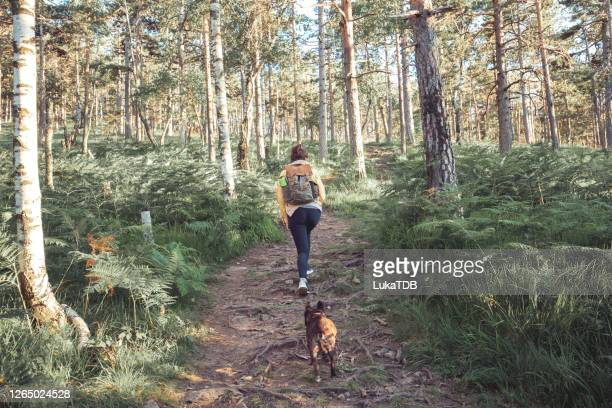 no better adventure buddy - free stock pictures, royalty-free photos & images