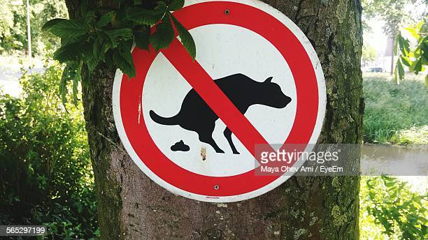 no dog feces signboard on tree outdoors - excremento fotografías e imágenes de stock