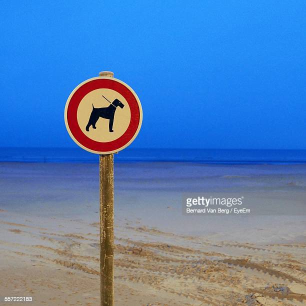 No Dogs Allowed Sign On Beach Against Clear Blue Sky