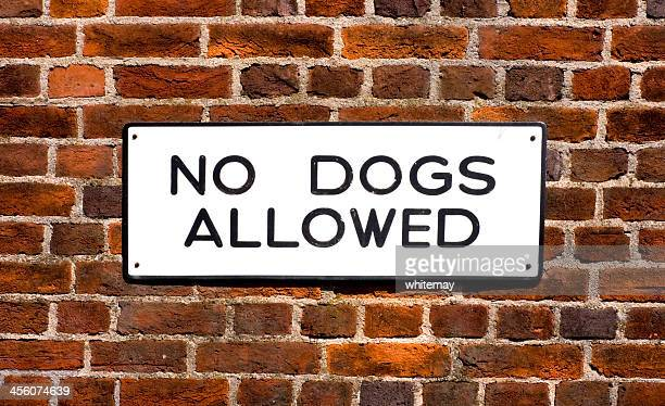 'no dogs allowed' sign on brick wall - enamel stock pictures, royalty-free photos & images