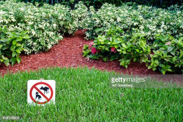 A no dogs sign on the lawn of a garden at Miami Beach