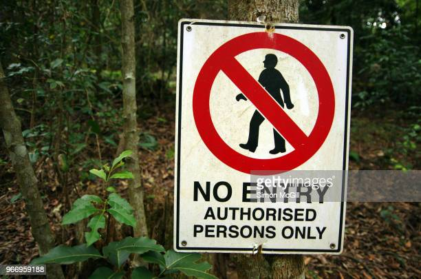 'No Entry: Authorised persons only' sign pinned to a tree in a forest