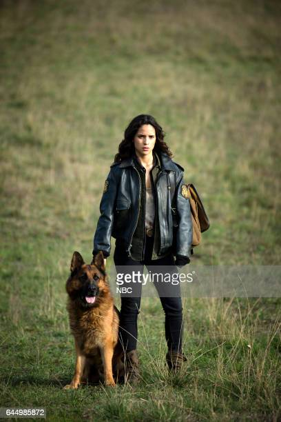 CITY 'No Place Like Home' Episode 110 Pictured Toto Adria Arjona as Dorothy