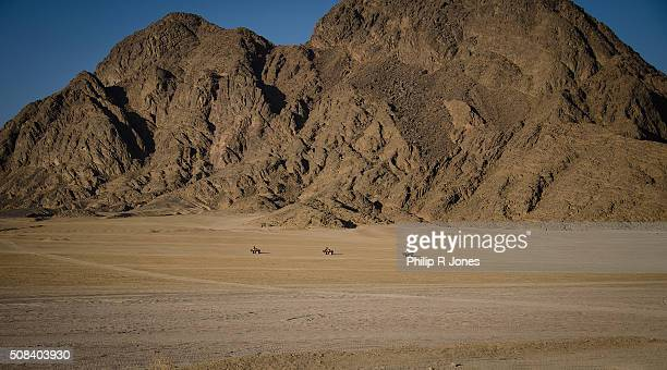 No Roads In The Desert
