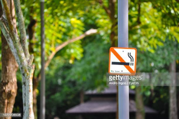 No Smoking Sign Against Trees On Pole