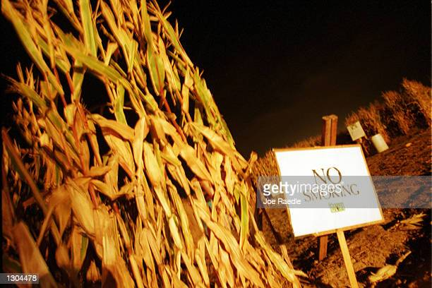 A no smoking sign is posted at the entrance of a 10acre cornfield maze October 19 2000 in La Union NM Tourism has increased in popularity as a way to...