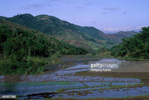 No Vietnam Near Hoa Binh Giang Mo Village Muong Hill Tribe Rice Fields