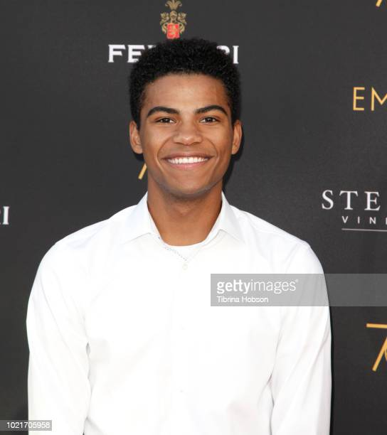 Noah Alexander Gerry attends the Television Academy's Daytime Programming Peer Group Reception at Saban Media Center on August 22 2018 in North...