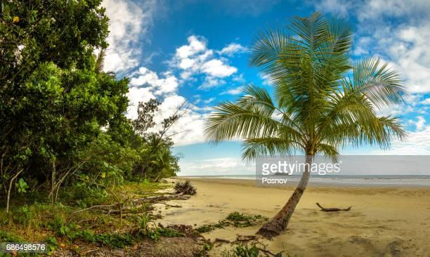 Noah Beach in Daintree Rainforest, Queensland