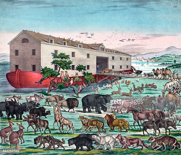 Noah's Ark and the General Deluge with the animals entering Noah's Art two by two before the The Flood color lithograph published in New York by...