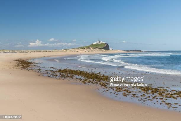 nobby's beach at newcastle, australia - 豪州 ニューカッスル ストックフォトと画像
