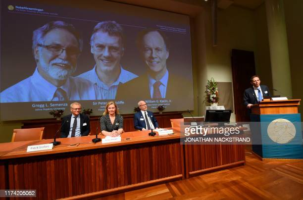 Nobel Assembly members Patrik Ernfors Anna Wedell and Randall Johnson sit in front of a screen displaying the winners of the 2019 Nobel Prize in...