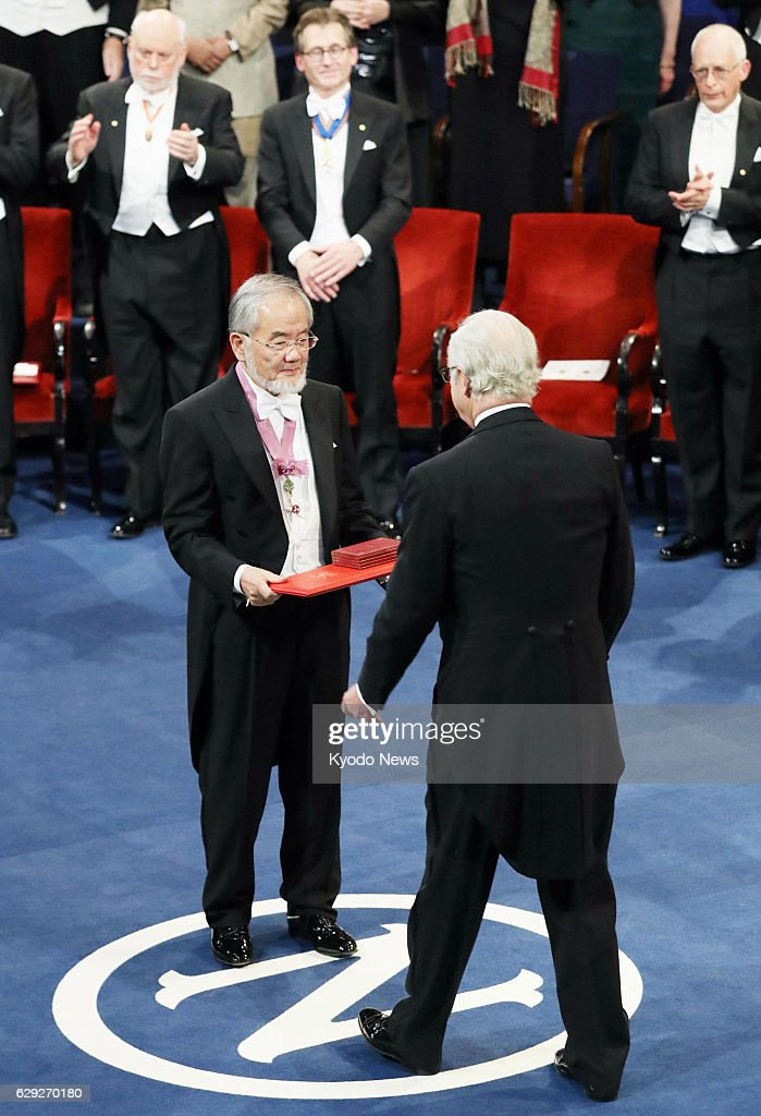 Japanese scientist Ohsumi receives Nobel prize : Nachrichtenfoto
