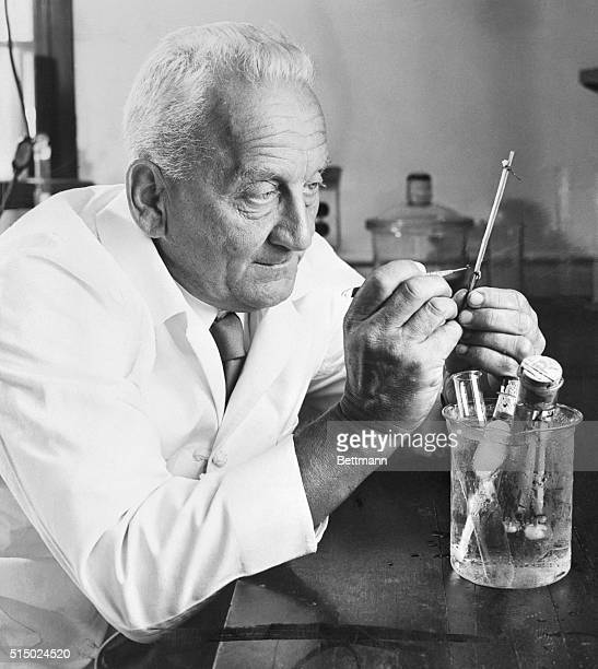 Nobel Prize-winning biochemist Dr. Albert Szent-Gyorgyi is famous for discovering vitamin C. His work with plant bioflavinoids may prove valuable to...