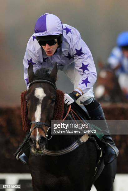 Noble Witness ridden by Adam Pogson during the Jane Cheney Memorial Novices' Handicap Chase