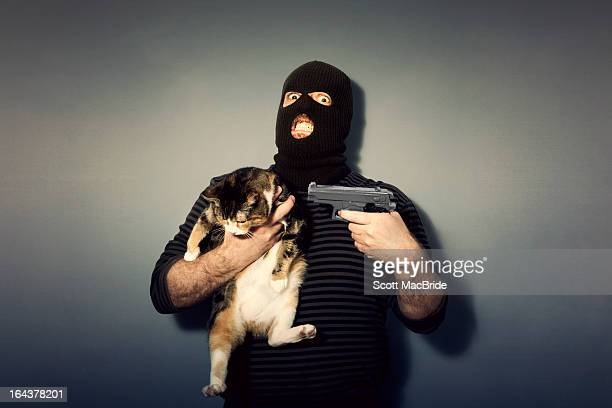 nobody move or the kitty gets it - scott macbride stock pictures, royalty-free photos & images
