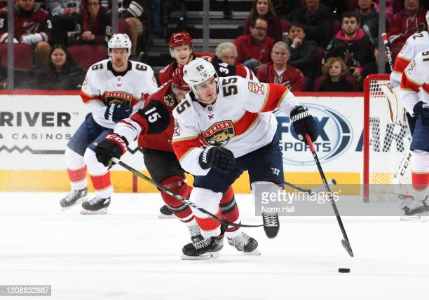 Noel Acciari of the Florida Panthers skates the puck up ice while being defended by Brad Richardson of the Arizona Coyotes at Gila River Arena on...