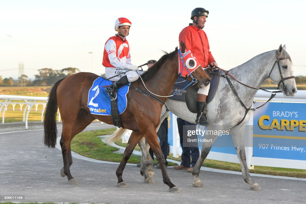 Noel Callow returns to the mounting yard on Kotinos after winning Sportsbet BM58 Handicap at Racing.com Park Synthetic Racecourse on August 20, 2017 in Pakenham, Australia.