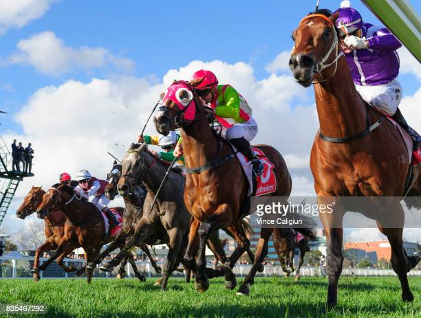 Noel Callow riding Ducimus Ben Thompson riding Kobayashi finish out of placings in Race 6 Vain Stakes during Melbourne Racing at Caulfield Racecourse...