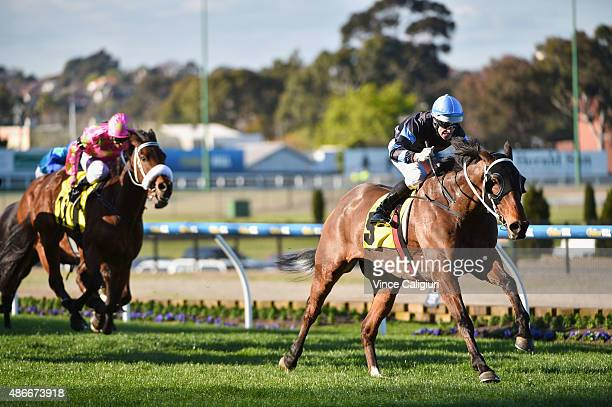 Noel Callow riding The Cleaner wins Race 7 the Dato'Tan Chin Nam Stakes during Melbourne Racing at Moonee Valley Racecourse on September 5 2015 in...